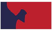 BRASIL VIDA logo
